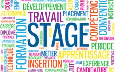 Emploi – Stage